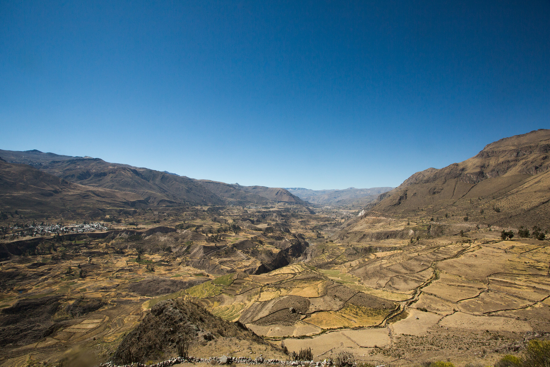 Colca Valley // Peru