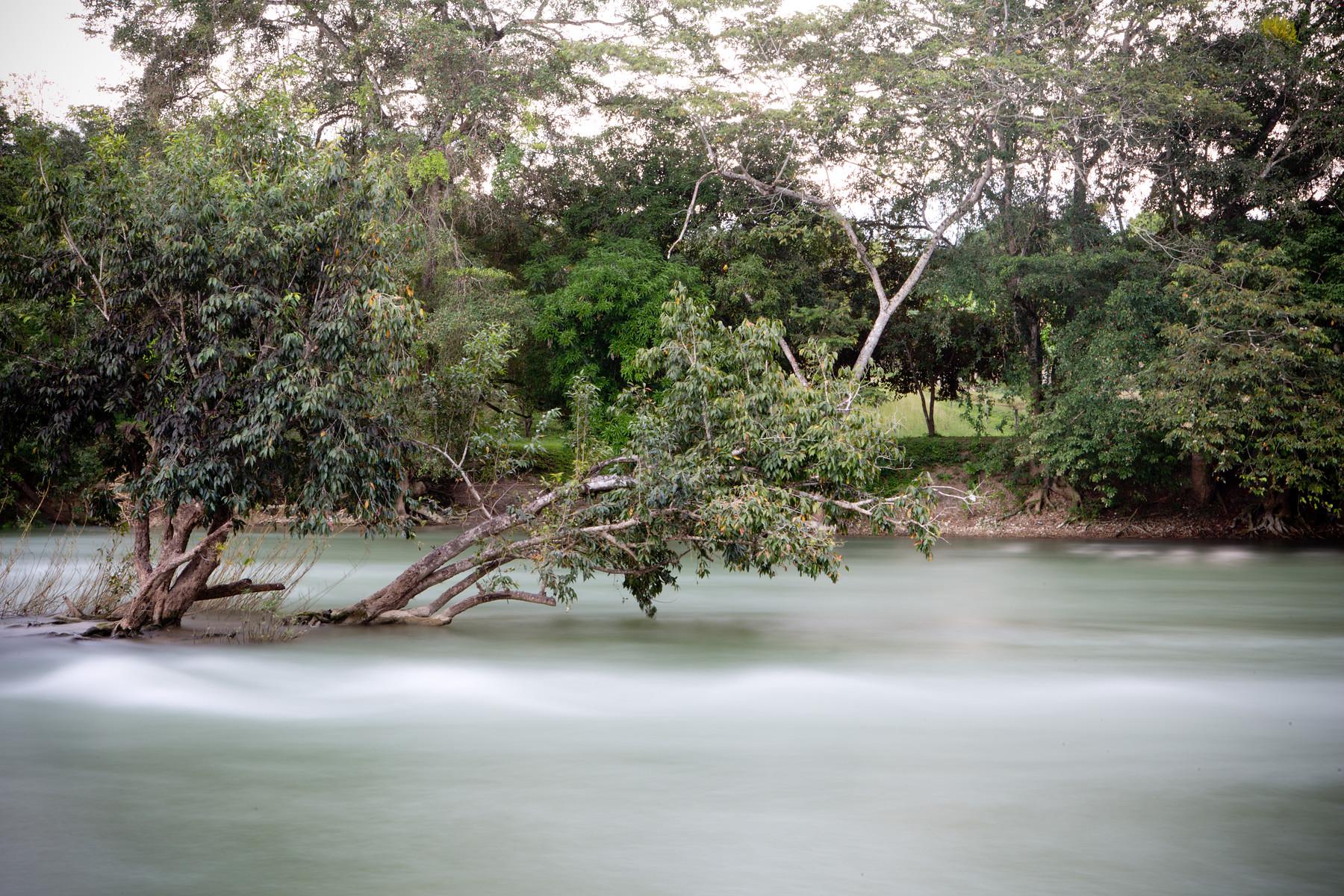 San Ignacio // Belize