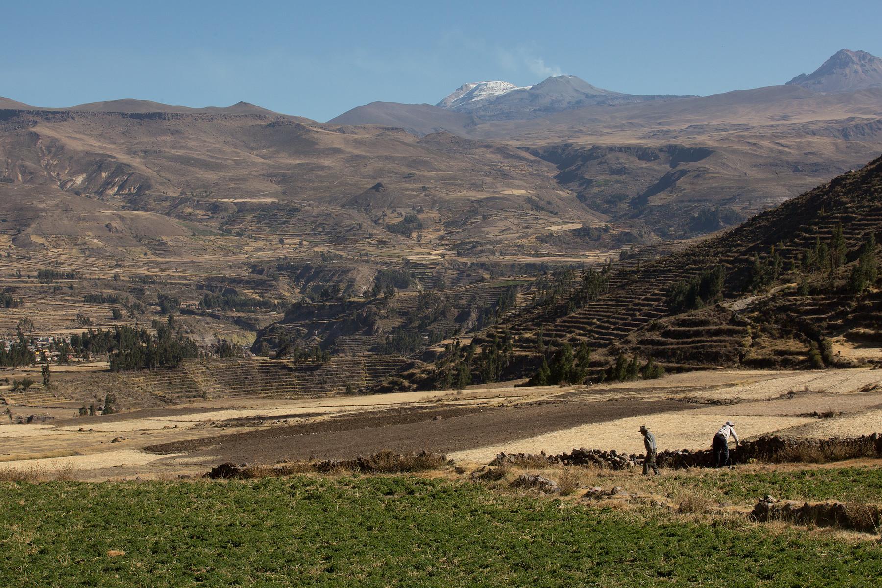 Peru // 2014
