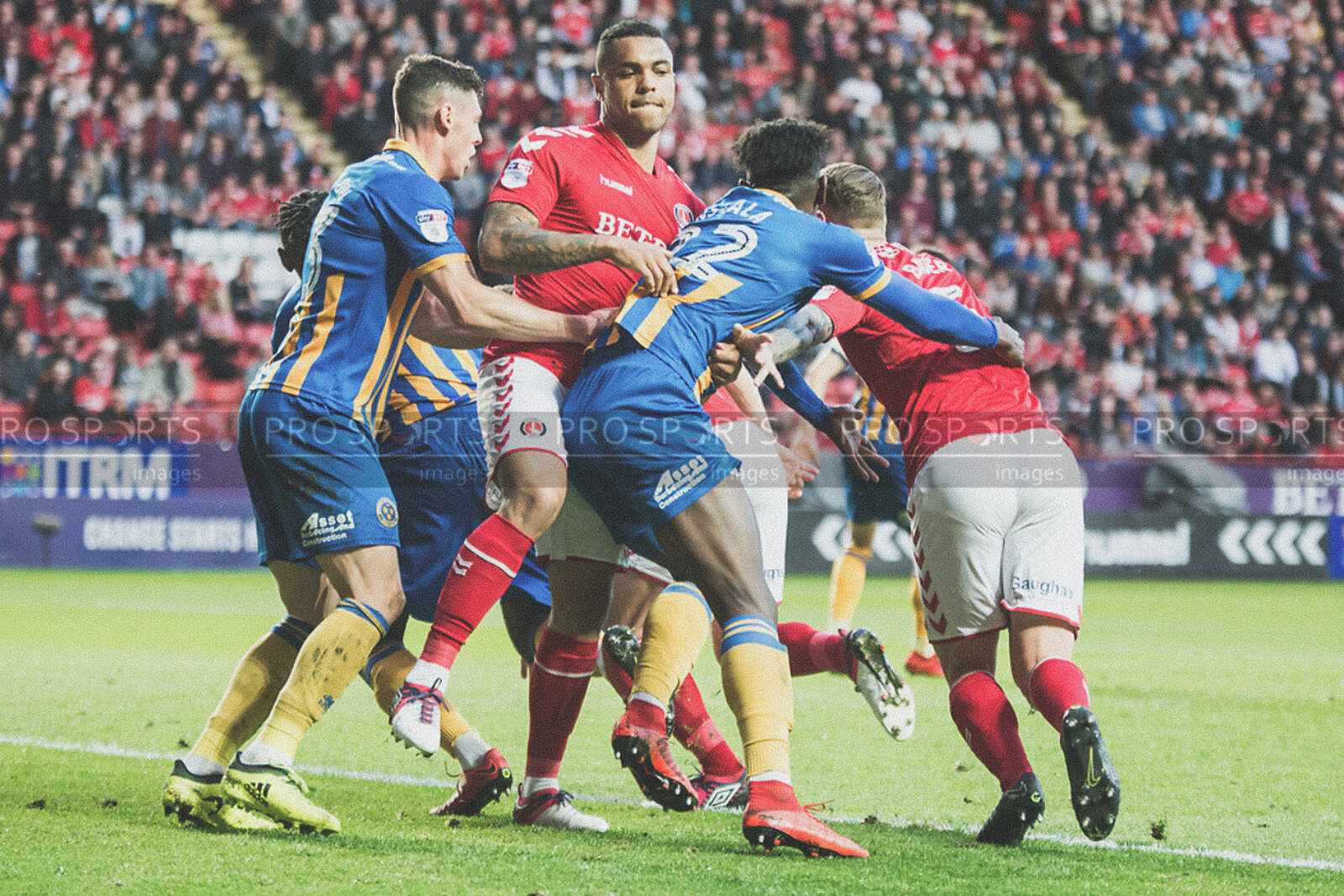 Charlton Athletic Vs Shrewsbury Town