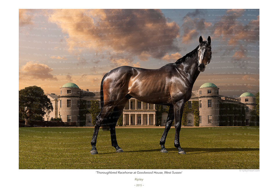 'Thoroughbred Racehorse at Goodwood House'