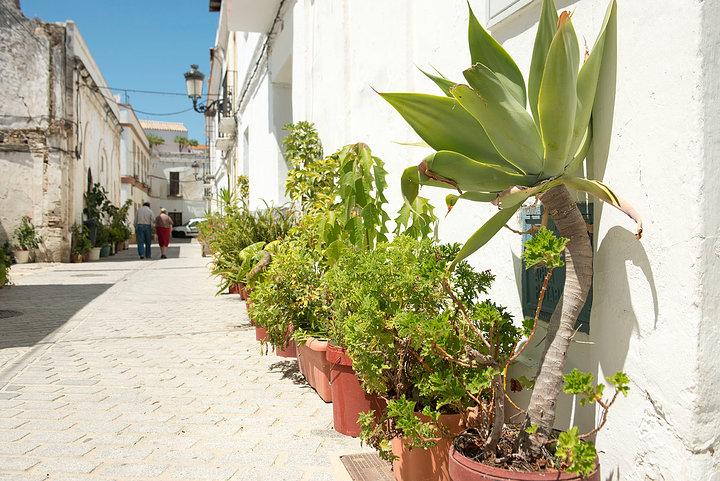 Tarifa Street 2