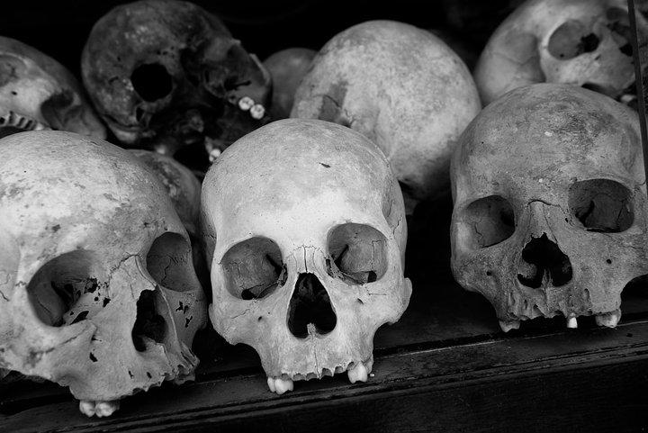 Killing Fields - Skulls