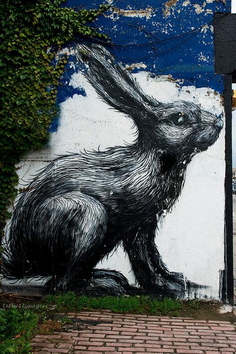 Roa Rabbit